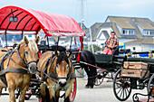 Pferdekutschen warten auf Gäste am Hafen von Vitte, Hiddensee, Ruegen, Ostseekueste, Mecklenburg-Vorpommern, Deutschland