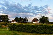Thatched house, Hiddensee, Ruegen, Ostseekueste, Mecklenburg-Vorpommern Germany