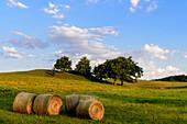 Round straw bales in the pasture in the village of Grieben, Hiddensee, Ruegen, Ostseekueste, Mecklenburg-Vorpommern, Germany