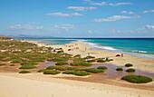 Playa de Sotavento de Jandia beach near Costa Calma, Fuerteventura, Canary Islands, Islas Canarias, Atlantic Ocean, Spain, Europe