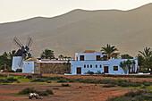 Museum Museo del Queso Majorero and Molino de Antigua at Antigua, Fuerteventura, Canary Islands, Islas Canarias, Atlantic Ocean, Spain, Europe