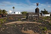 Bodegas El Grifo in the wine growing area near Masdache, Lanzarote, Canary Islands, Islas Canarias, Spain, Europe