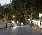 Plaza León y Castilloat Haria, Atlantic Ocean, Lanzarote, Canary Islands, Islas Canarias, Spain, Europe
