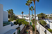 View at houses and palm trees at Costa Teguise, Atlantic Ocean, Lanzarote, Canary Islands, Islas Canarias, Spain, Europe