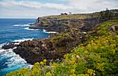 Wild rocky coast at Buenavista del Norte, Tenerife, Canary Islands, Islas Canarias, Atlantic Ocean, Spain, Europe