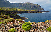 Teno mountains and rocky coast at Buenavista del Norte, Tenerife, Canary Islands, Islas Canarias, Atlantic Ocean, Spain, Europe