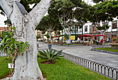Square Plaza de la Libertad at Garachico and its port, Tenerife, Canary Islands, Islas Canarias, Atlantic Ocean, Spain, Europe