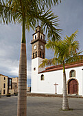 Church and palm trees at Buenavista del Norte, Tenerife, Canary Islands, Islas Canarias, Atlantic Ocean, Spain, Europe