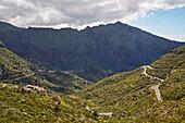View across luxuriant vegetation at Masca, Teno mountains, Tenerife, Canary Islands, Islas Canarias, Atlantic Ocean, Spain, Europe