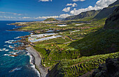 Plantations of bananas at the foot of the Teno mountains and Buenavista del Norte, Tenerife, Canary Islands, Islas Canarias, Atlantic Ocean, Spain, Europe