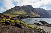 Punta de Teno and Teno mountains, Tenerife, Canary Islands, Islas Canarias, Atlantic Ocean, Spain, Europe
