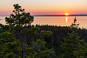 Scenery with coastline and forest at sunset as seen from Duck Harbor Mountain on Isle au Haut in Acadia National Park, Maine, USA