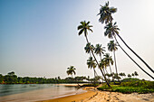 River flowing in the ocean south of Buchanan, Liberia, West Africa, Africa