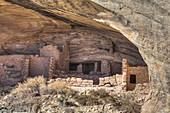 Butler Wash Achaeological Ruin, Ancestral Pueblo, Butler Wash, Shash Jaa National Monument, Utah, United States of America, North America