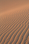 Sand textures on the dramatic Dunas de Corralejo in evening light on the volcanic island of Fuerteventura, Canary Islands, Spain, Europe
