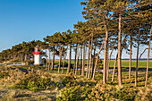 Lighthous, Gellen, Hiddensee island, Mecklenburg-Western Pomerania, Germany