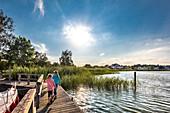Marina, Balm, Achterwasser, Usedom island, Mecklenburg-Western Pomerania, Germany