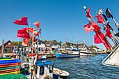 Fishing boats, harbour, Vitte, Hiddensee island, Mecklenburg-Western Pomerania, Germany