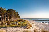 Beach, Gellen, Hiddensee island, Mecklenburg-Western Pomerania, Germany