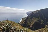 north coast, Atlantic, near Mirador de los Topos nearby El Tablado, UNESCO Biosphere Reserve, La Palma, Canary Islands, Spain, Europe