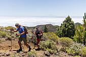 hiking, couple, ascent to Birigoyo mountain, 1807m,  Parque Natural de Cumbre Vieja, UNESCO Biosphere Reserve, La Palma, Canary Islands, Spain, Europe