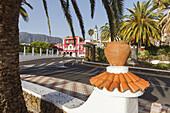 Jardin La Era and Jardin El Peredon, gardens, palm trees, main square, town hall, El Paso, UNESCO Biosphere Reserve, La Palma, Canary Islands, Spain, Europe