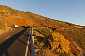 road to the Pico de los Muchachos, near Pico de la Cruz, crater rim, Caldera de Taburiente, UNESCO Biosphere Reserve, La Palma, Canary Islands, Spain, Europe