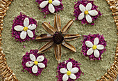 carpet of flowers for the procession, Corpus Christi, Feast of Corpus Christi, Villa de Mazo, UNESCO Biosphere Reserve, La Palma, Canary Islands, Spain, Europe