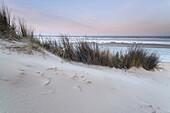 Dune, Sandbar, Dawn, Langeoog, North Sea, East Frisian Islands, East Frisia, Lower Saxony, Germany, Europe
