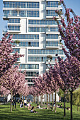 Cherry Blossom, East Side  Park, Skyscraper Living Levels