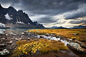 Approaching storm, the Ramparts, Tonquin Valley, Jasper National Park Alberta.