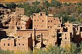 Old Kasbah, Itran, El Kelaa M'Gouna, Vallée des Roses, Rose Valley, Sous-Massa-Draa, High Atlas, Morocco, Africa,.
