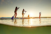 Three Stand Up Paddler and a kid on SUP,  on Lake Starnberg,  Lake Starnberg, Bavaria, Germany