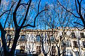 Houses at the boulevard Passeig del Born, Palma de Mallorca, Mallorca, Spain