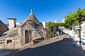 The Trulli of Alberobello village, Bari district, Apulia, Italy