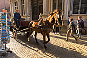 Touristic horse-drawn carriage, Bruges,flemish region, West Flanders, Belgium, Europe