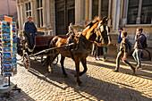 Touristic horse-drawn carriage, Bruges,flemish region, West Flanders, Belgium, Europe