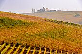 The vineyards and the Volta castle in Autumn. Italy, Piedmont, district of Cuneo, Langhe, Barolo