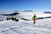 Woman backcountry skiing ascending towards Trainsjoch, fog and Kaiser range in background, Trainsjoch, Bavarian Alps, Upper Bavaria, Bavaria, Germany