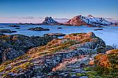 Felsküste mit verschneiten Bergen im Hintergrund, Lofoten, Nordland, Norwegen