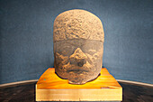 Olmec colossal head, National Museum of Anthropology of Mexico City, Mexico City, Mexico DF, Mexico.