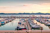 Europe, Croatia, North Dalmatia, Dalmatian coast, Zadar, Zara, boats in the Tankerkomerc harbour
