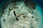 Woman blowing ring bubbles, freediving underwater off coast of Roatan Islands reef, Honduras