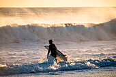 Surfer in wetsuit walking and carrying surfboard in sea at sunset