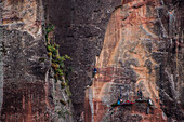 Distant view of adventurous rock climber climbing challenging cliff, Liming, Yunnan Province, China