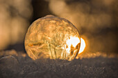 Close up of a single frozen soap bubble against sun at sunset