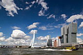 taxi boat in front of the erasmus bridge over the meuse, rotterdam city center, the netherlands