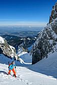 Woman backcountry-skiing ascending through cirque towards Zwiesel, Zwiesel, Chiemgau Alps, Chiemgau, Upper Bavaria, Bavaria, Germany