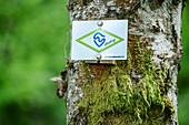 Sign Albsteig, Albsteig, Black Forest, Baden-Wuerttemberg, Germany