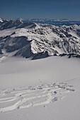 Ski tracks on the Zufallferner. On the plateau a group of ski climbers.
